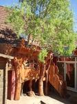Der Baum war zuerst da und die Kindergrippe wollte ein Baumhaus haben.